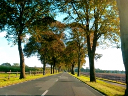 a road in NRW